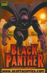 Black Panther Who Is The Black Panther? Hardcover