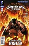 Batman and Robin (2011 2nd series) Annual