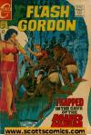 Flash Gordon (1966-1982)