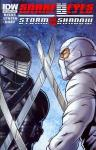 Snake Eyes (and Storm Shadow #13-21)  (2011-2013)
