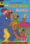 Hair Bear Bunch (1972 - 1974)