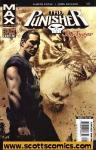 Punisher The Tyger (Mature Readers)