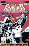 Punisher (1987 2nd series) Annual