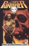 Punisher TPB (2001-2004 Marvel Knights)