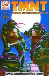 Teenage Mutant Ninja Turtles (2001 4th series)