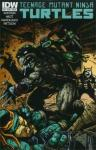 Teenage Mutant Ninja Turtles (2011 5th series IDW)