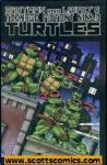 Teenage Mutant Ninja Turtles Color Special (2009 one shot)
