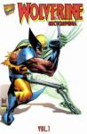 Wolverine Encyclopedia (1996 mini series)