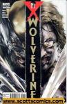 Wolverine Mr X (2010 one shot)